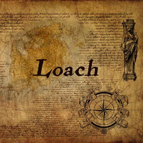 loach