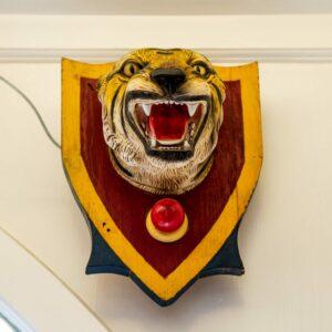 Carnival Tiger
