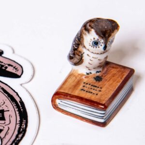 Large Owl Standing on a Book