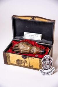 Mummified Hand w/ Museum Stamp