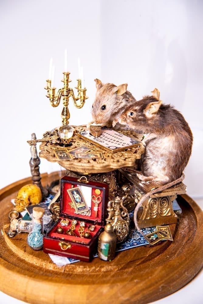 Seance Mice